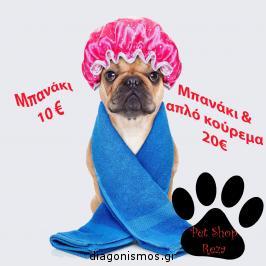 Διαγωνισμός με δώρο μπανάκι για τον σκύλο σας