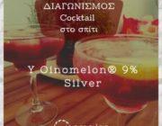 diagonismos-gia-apo-mia-y-oinomelon-silver-9-292105.jpg